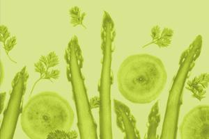 Journal für Ernährungsmedizin
